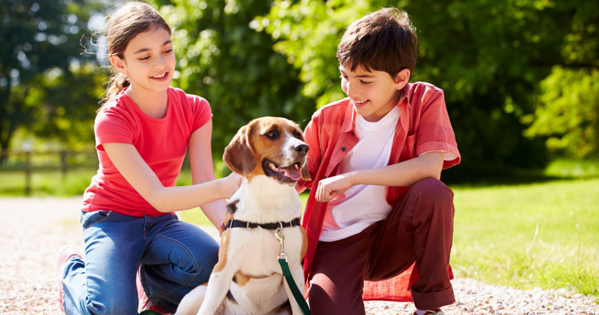 Children playing outdoors with their dog which might have a ringworm infection